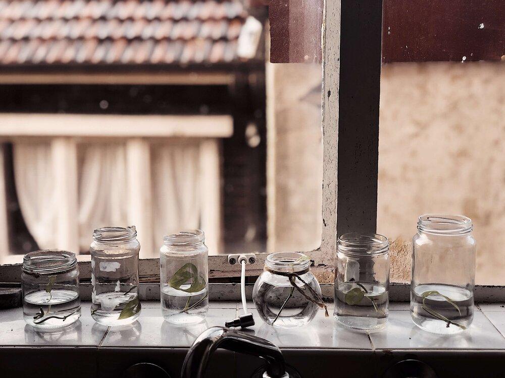photo of neri morris window nursery